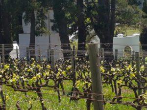 Hamilton Russel Wine Farm